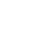 Pingouin Monumental Résine - Artiste JONATHAN DELMAS